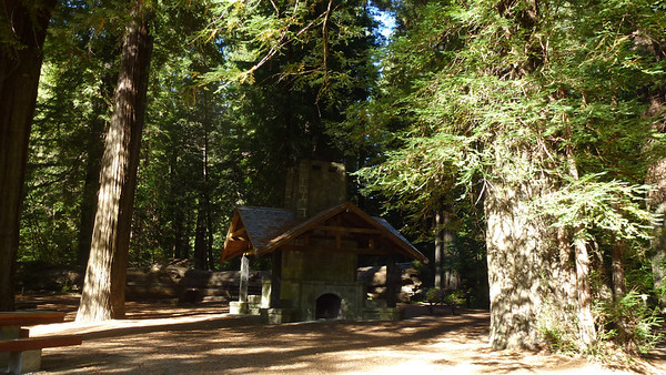 A picnic site on the Redwood Highway