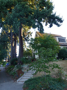 Evening walk around a few  blocks in Portland,Oregon