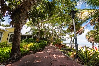 USEPPA Banyan & Path 4