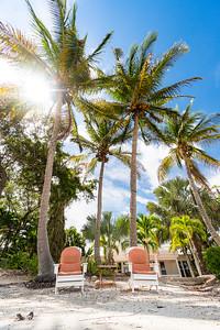 USEPPA Palms Chairs Final