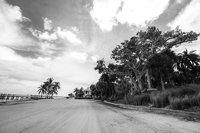 USEPPA Beach Banyan 1 BW