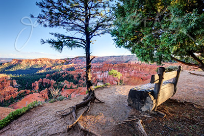 Peaceful Overlook - Bryce Canyon National Park