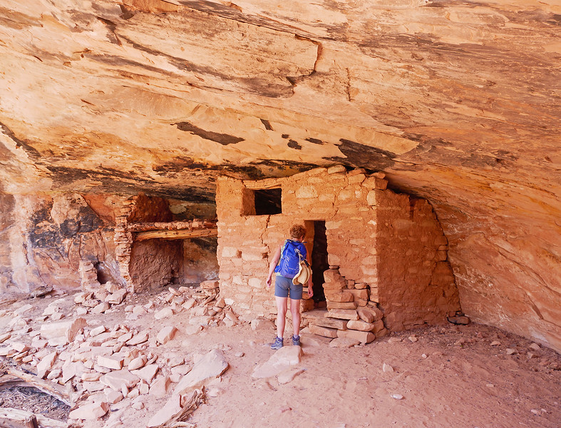 A series of alcoves hold some iinteresting ruins, just above the drainage in North Mule canyon.