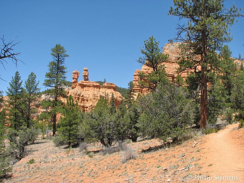 Red Canyon hoodoos