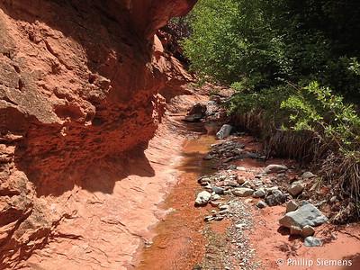 North Fork Taylor Creek