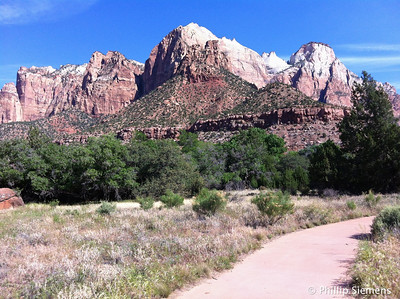 On the Pa'rus Trail, from visitor center to mouth of the canyon.