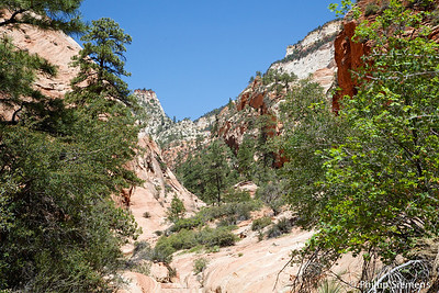 A short, narrower canyon close to Many Pools called West Root Canal (unofficially).