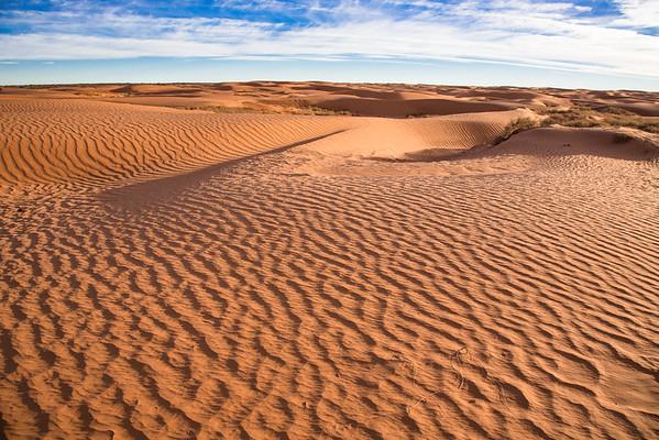 Sand Dunes Near Hans Flat Road, Utah