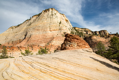 Crazy Quilt Mesa, Hoodoo, and Sandsone Waves, Zion National Park, Utah