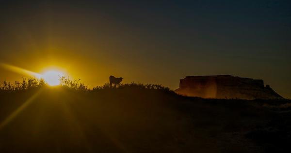 Flattop Sunset, San Rafael Desert, Utah