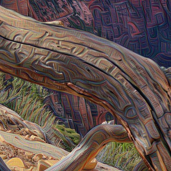 Angels Landing #7 - Detail #4