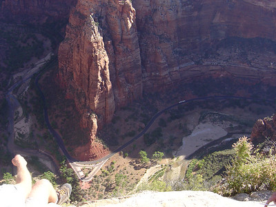 angels landing from the  top