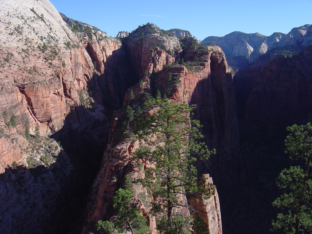 angels landing within sight