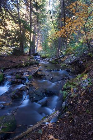 Utah Nature Shots