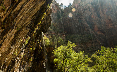 Weeping Wall - Zion National Park