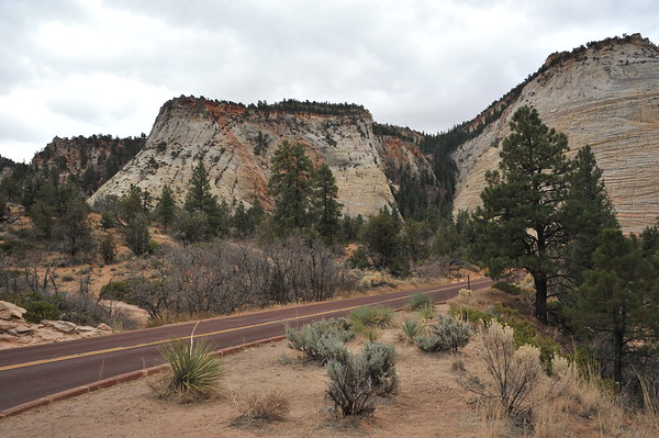 Entry Road to Zion - Highway 9
