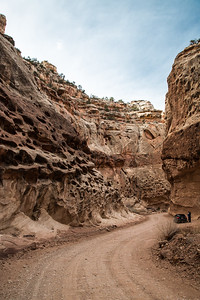 Utah - Capitol Reef National Park - Capitol Gorge road to Trailhead-9644-5