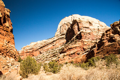 Utah - Capitol Reef National Park - Capitol Gorge Trail-9736-16
