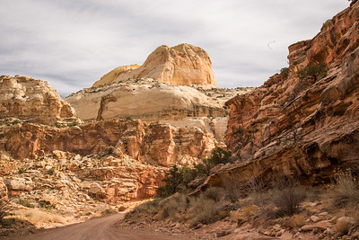 Utah - Capitol Reef National Park - Capitol Gorge road to Trailhead-9657-7