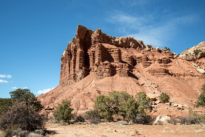 Utah - Capitol Reef National Park - Capitol Gorge Trail-9721-14