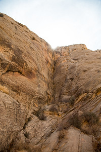 Utah - Capitol Reef National Park - Capitol Gorge Trail-9709-12