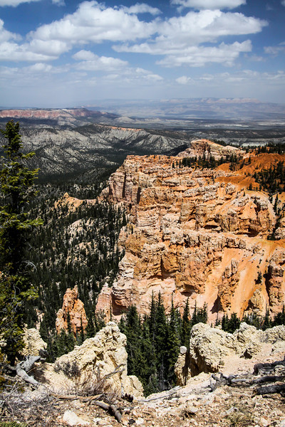Day 3 Bryce. We stopped at all 14 overlooks. It was windy and cold but every vista was beautiful. The day was clear and visibility great.