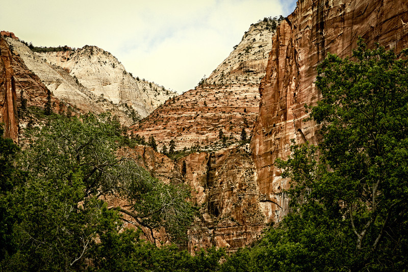 Day 1. Zion. At the end of the line we took one of the trails along side a river bed.