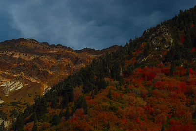 Fall in the Wasatch Mountains