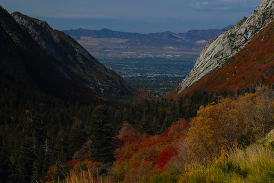 Salt Lake City and Cottonwood Canyon
