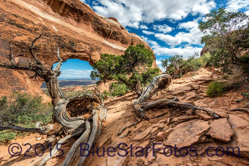 Behind Partition Arch<br /> Devils Garden