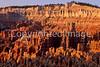 Bryce Canyon Nat'l Park, Utah - 7 - 72 ppi
