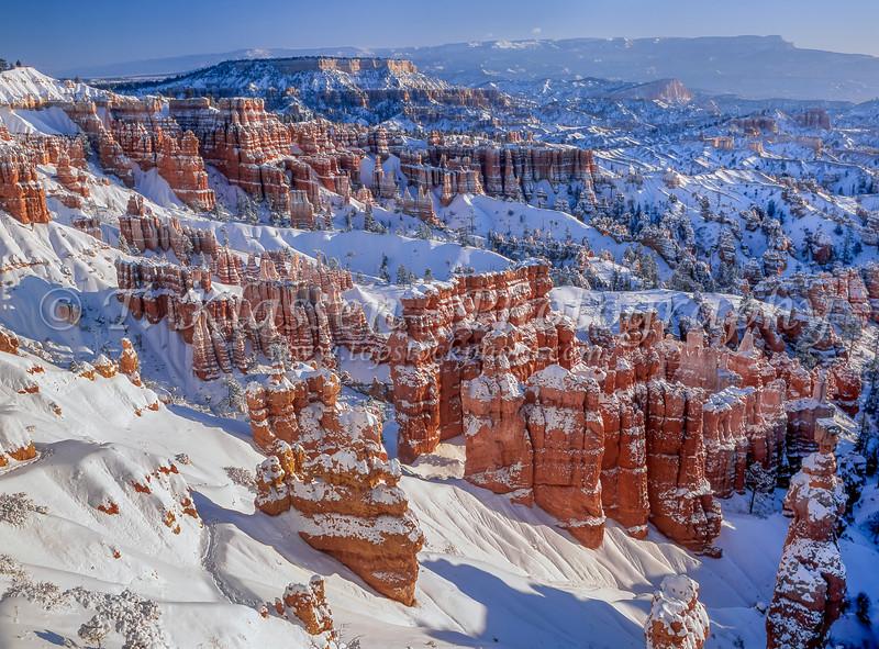 Fresh snowfall in the Queen's Garden in Bryce Canyon National Park, Utah, USA.