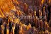 Bryce Canyon Nat'l Park, Utah - 9 - 72 ppi