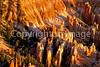 Bryce Canyon Nat'l Park, Utah - 20 - 72 ppi