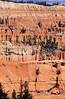 Day hikers in Utah's Bryce Canyon National Park - 31 - 72 ppi