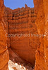 Day hikers in Utah's Bryce Canyon National Park - 3 - 72 ppi