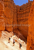 Day hikers in Utah's Bryce Canyon National Park - 43 - 72 ppi