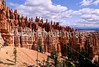 Day hikers in Utah's Bryce Canyon National Park - 63 - 72 ppi