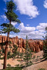 Day hikers in Utah's Bryce Canyon National Park - 75 - 72 ppi