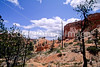 Day hikers in Utah's Bryce Canyon National Park - 32 - 72 ppi
