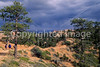 Day hikers in Utah's Bryce Canyon National Park - 36 - 72 ppi