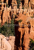 Day hikers in Utah's Bryce Canyon National Park - 46 - 72 ppi
