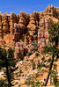 Day hikers in Utah's Bryce Canyon National Park - 44 - 72 ppi