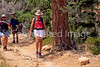 Day hikers in Utah's Bryce Canyon National Park - 84 - 72 ppi