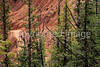 Day hikers in Utah's Bryce Canyon National Park - 37 - 72 ppi