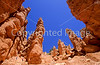 Day hikers in Utah's Bryce Canyon National Park - 97 - 72 ppi