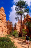 Day hikers in Utah's Bryce Canyon National Park - 45 - 72 ppi