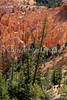 Day hikers in Utah's Bryce Canyon National Park - 54 - 72 ppi