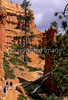 Day hikers in Utah's Bryce Canyon National Park - 10 - 72 ppi