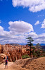 Day hikers in Utah's Bryce Canyon National Park - 47 - 72 ppi